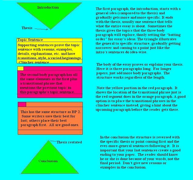 essay structure reference When writing an introduction, you should typically use a 'general to specific'  structure that is, introduce the particular problem or topic the essay will address  in.